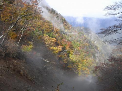 夏木山手前の紅葉.jpg