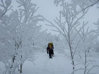2 雪深し9:02.jpg