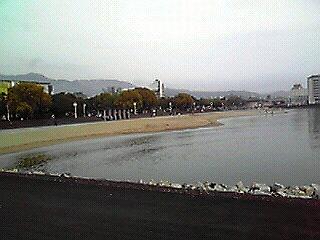 写真1 的が浜.JPG